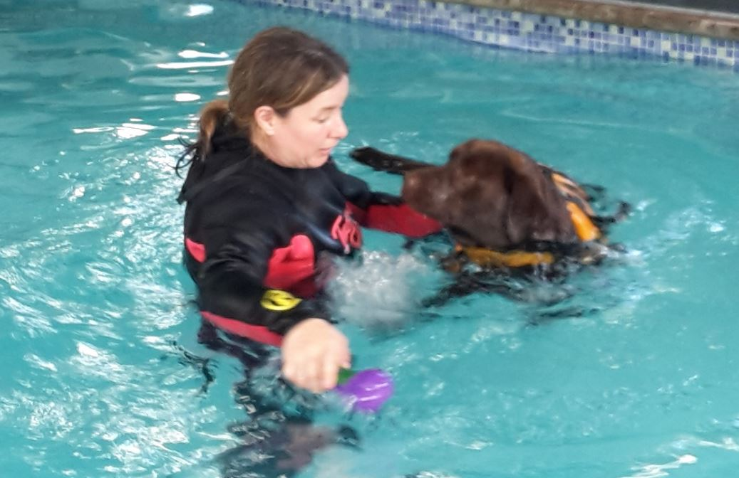 Sarah's Hydrotherapy Course