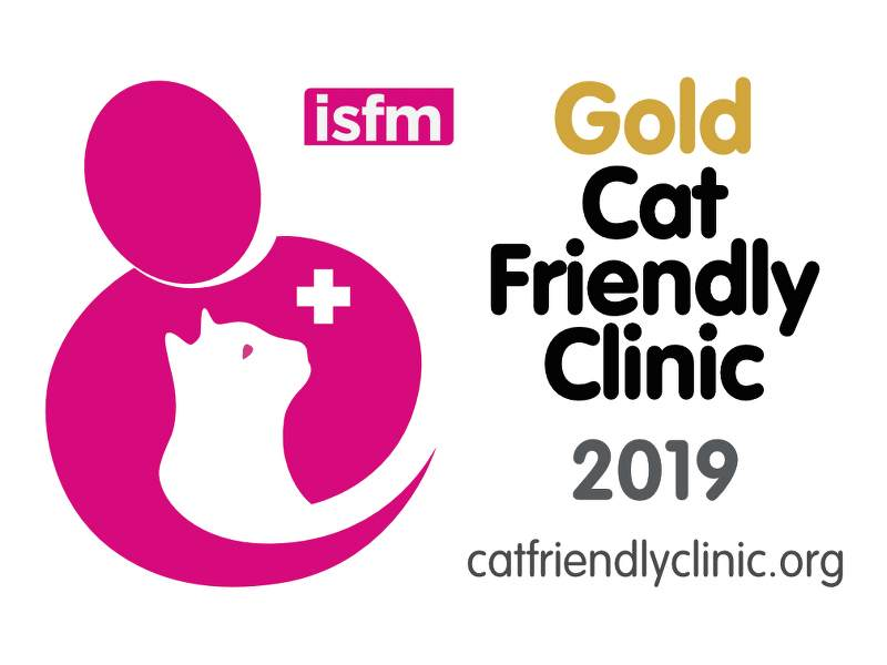 Achieving Gold Cat Friendly Clinic Status